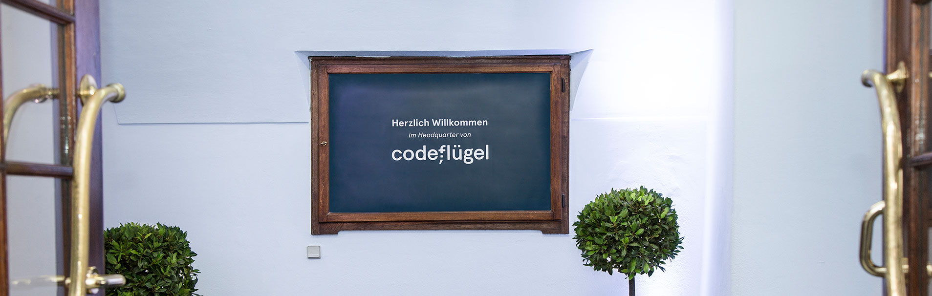 codeflügel über uns Team Unternehmenskultur